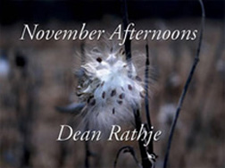 November Afternoons Cover